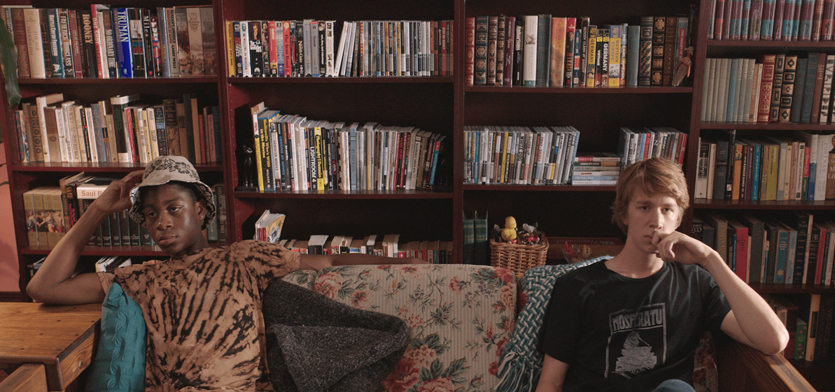 Me and Earl and the Dying Girl (2015)_1
