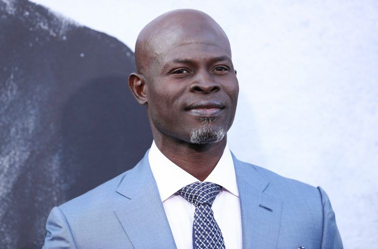 Djimon-Hounsou-African-History-Y